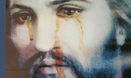 Mary's Way to Jesus Worldwide Apostolate